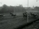 Harness racing in Hilversum